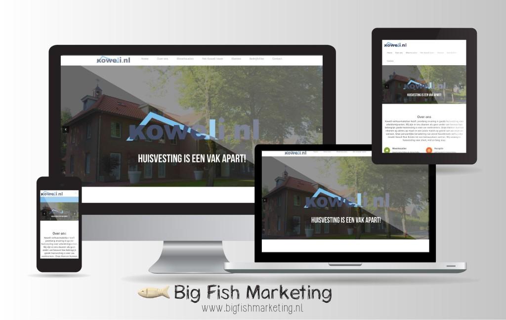 Website Koweli.nl